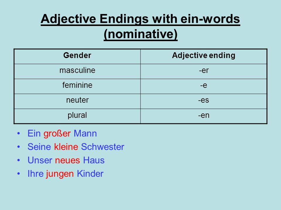 Adjective Endings with ein-words (nominative) Ein großer Mann Seine kleine Schwester Unser neues Haus Ihre jungen Kinder GenderAdjective ending mascul