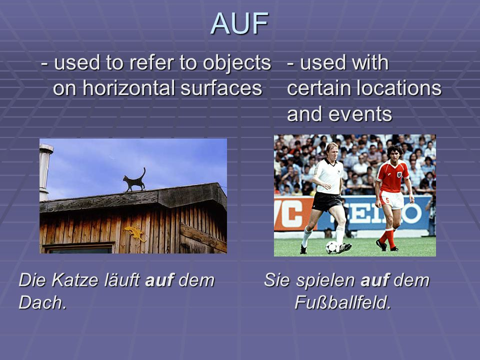 AUF - used to refer to objects - used with on horizontal surfaces certain locations on horizontal surfaces certain locations and events and events Die Katze läuft auf dem Sie spielen auf dem Dach.
