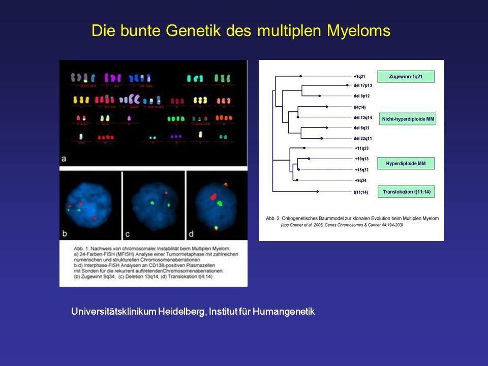 Universitätsklinikum Heidelberg, Institut für Humangenetik Die bunte Genetik des multiplen Myeloms