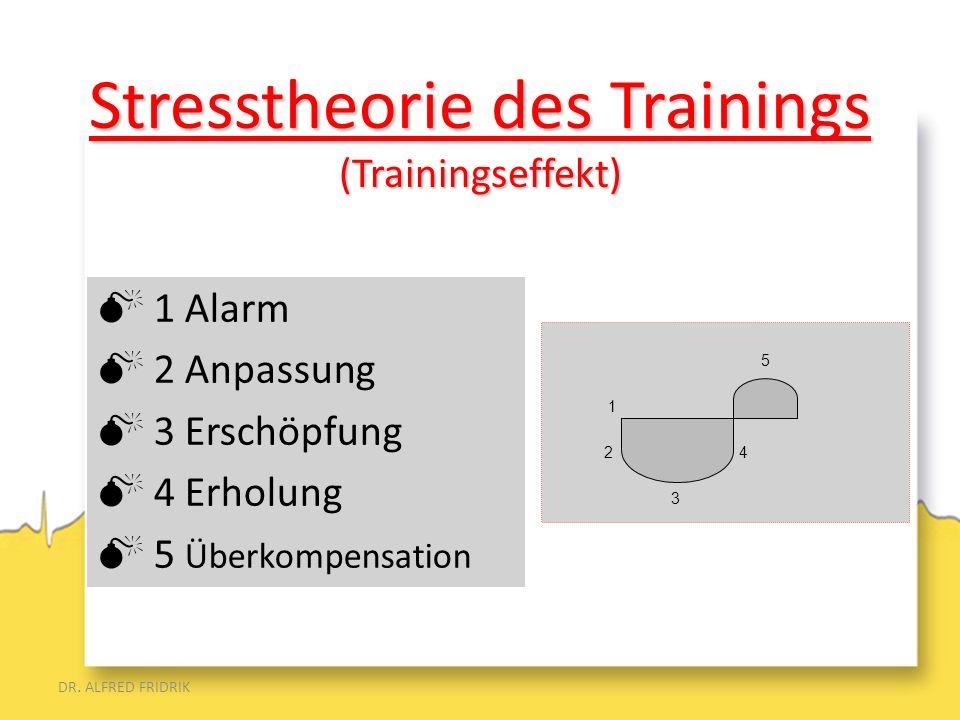 DR. ALFRED FRIDRIK 1 Alarm 2 Anpassung 3 Erschöpfung 4 Erholung 5 Überkompensation 5 1 2 4 3 Stresstheorie des Trainings (Trainingseffekt)