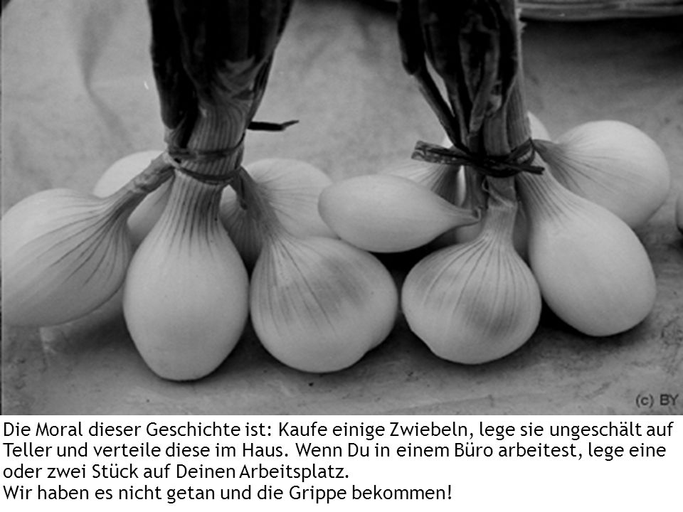 Die Moral dieser Geschichte ist: Kaufe einige Zwiebeln, lege sie ungeschält auf Teller und verteile diese im Haus.