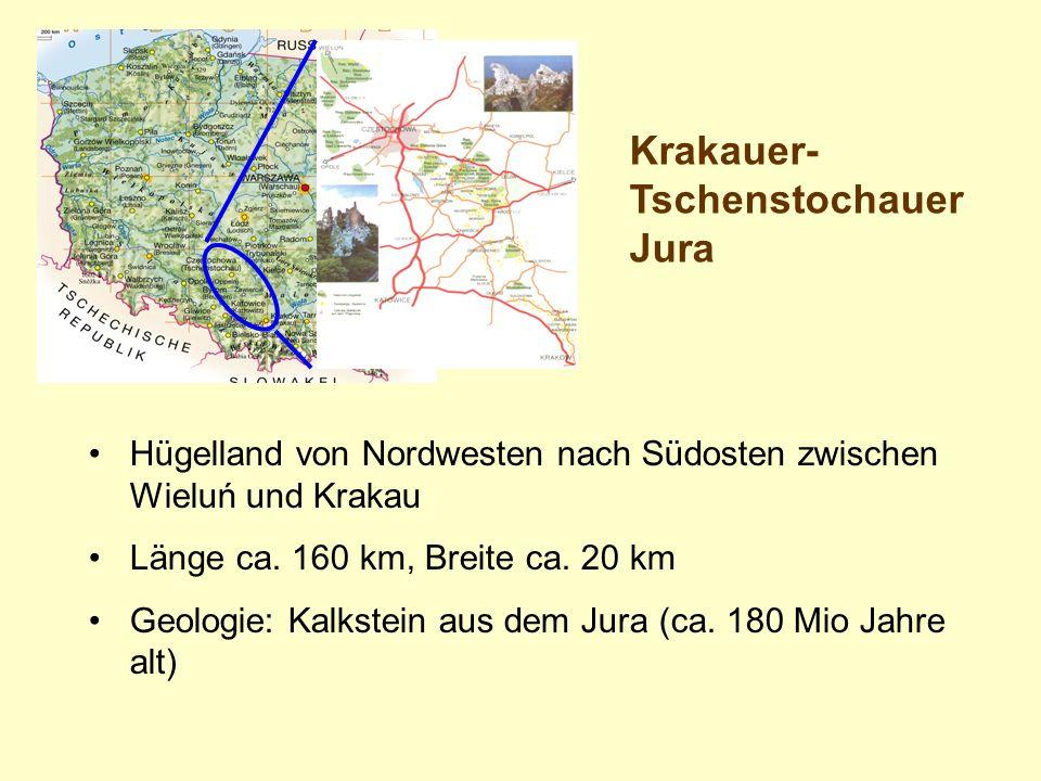 Hügelland von Nordwesten nach Südosten zwischen Wieluń und Krakau Länge ca. 160 km, Breite ca. 20 km Geologie: Kalkstein aus dem Jura (ca. 180 Mio Jah