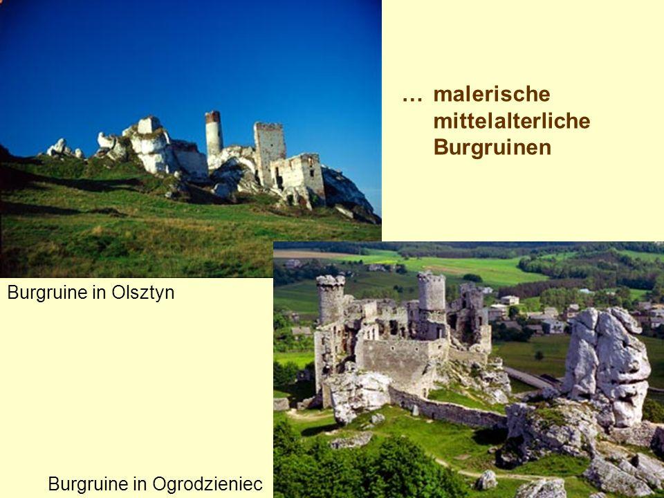 …malerische mittelalterliche Burgruinen Burgruine in Olsztyn Burgruine in Ogrodzieniec
