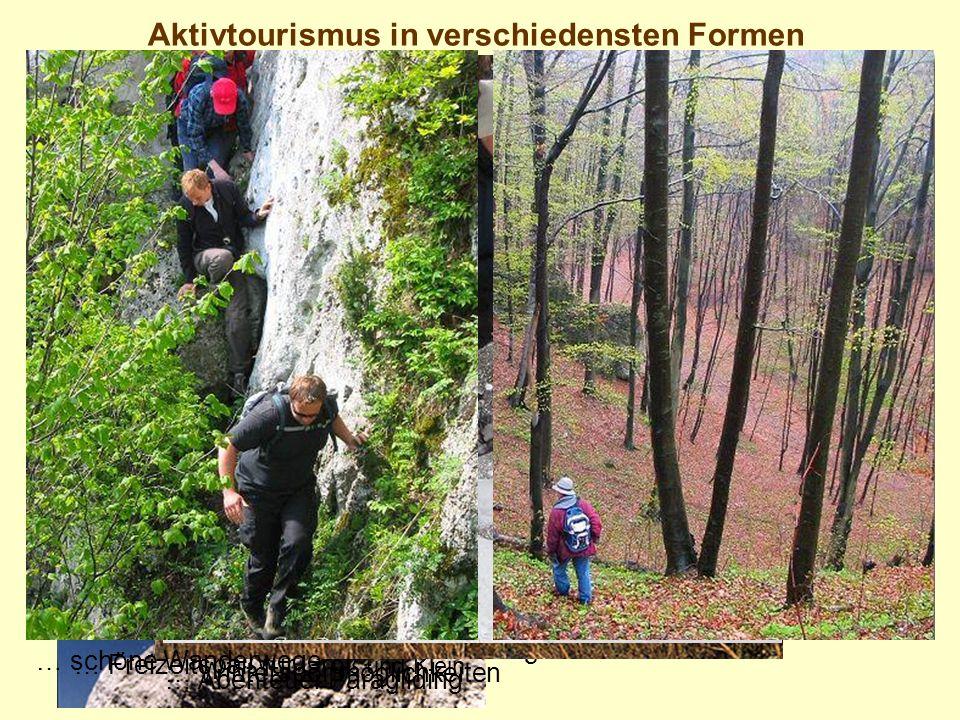 Aktivtourismus in verschiedensten Formen … Hervorragend ausgebautes Radwegenetz … Klettern an bizarren Felsformationen … Freizeitspaß für Gro ß und Kl