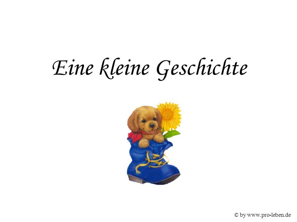 © by www.pro-leben.de Eine kleine Geschichte