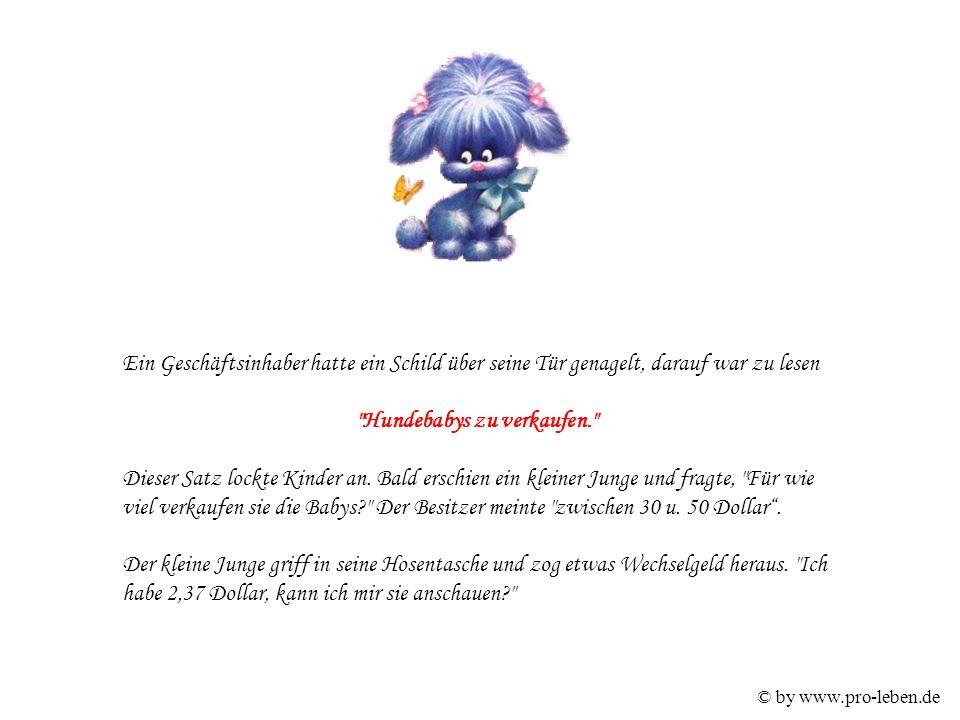 © by www.pro-leben.de Ein Geschäftsinhaber hatte ein Schild über seine Tür genagelt, darauf war zu lesen Hundebabys zu verkaufen. Dieser Satz lockte Kinder an.