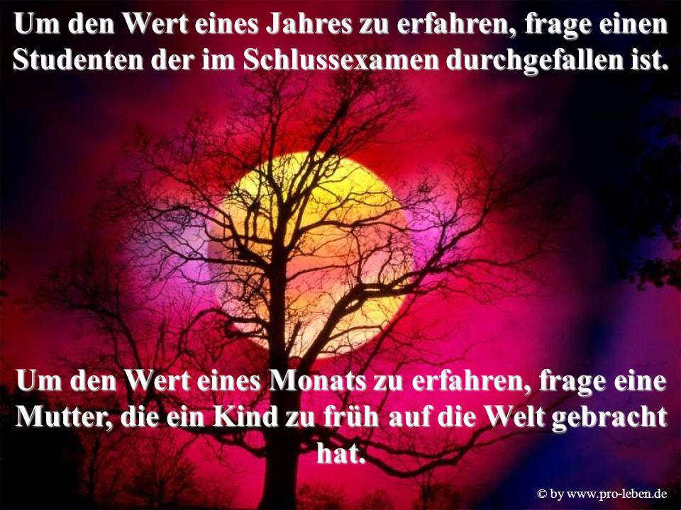 © by www.pro-leben.de Um den Wert eines Jahres zu erfahren, frage einen Studenten der im Schlussexamen durchgefallen ist.