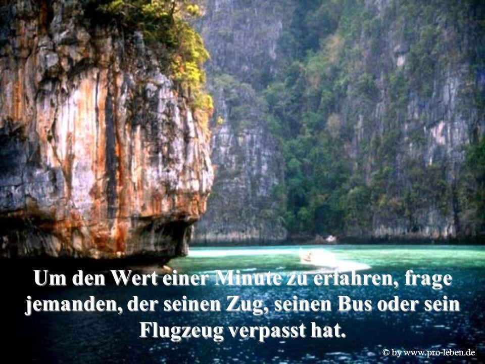 © by www.pro-leben.de Um den Wert einer Minute zu erfahren, frage jemanden, der seinen Zug, seinen Bus oder sein Flugzeug verpasst hat.