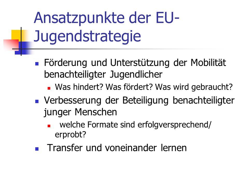 Ansatzpunkte der EU- Jugendstrategie Förderung und Unterstützung der Mobilität benachteiligter Jugendlicher Was hindert? Was fördert? Was wird gebrauc
