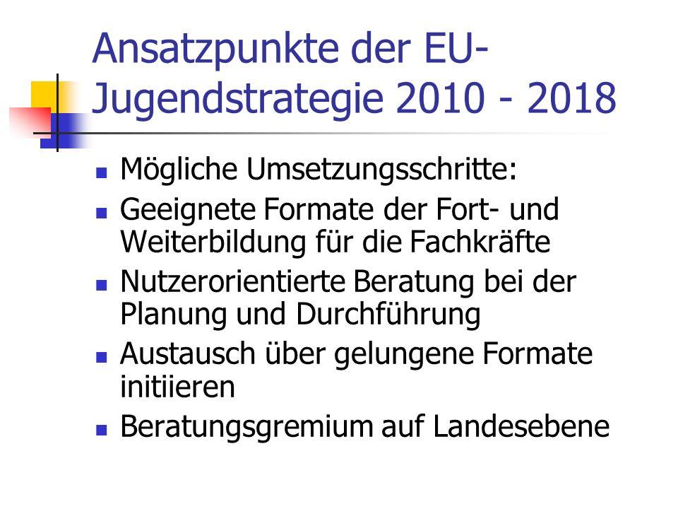 Ansatzpunkte der EU- Jugendstrategie 2010 - 2018 Mögliche Umsetzungsschritte: Geeignete Formate der Fort- und Weiterbildung für die Fachkräfte Nutzerorientierte Beratung bei der Planung und Durchführung Austausch über gelungene Formate initiieren Beratungsgremium auf Landesebene