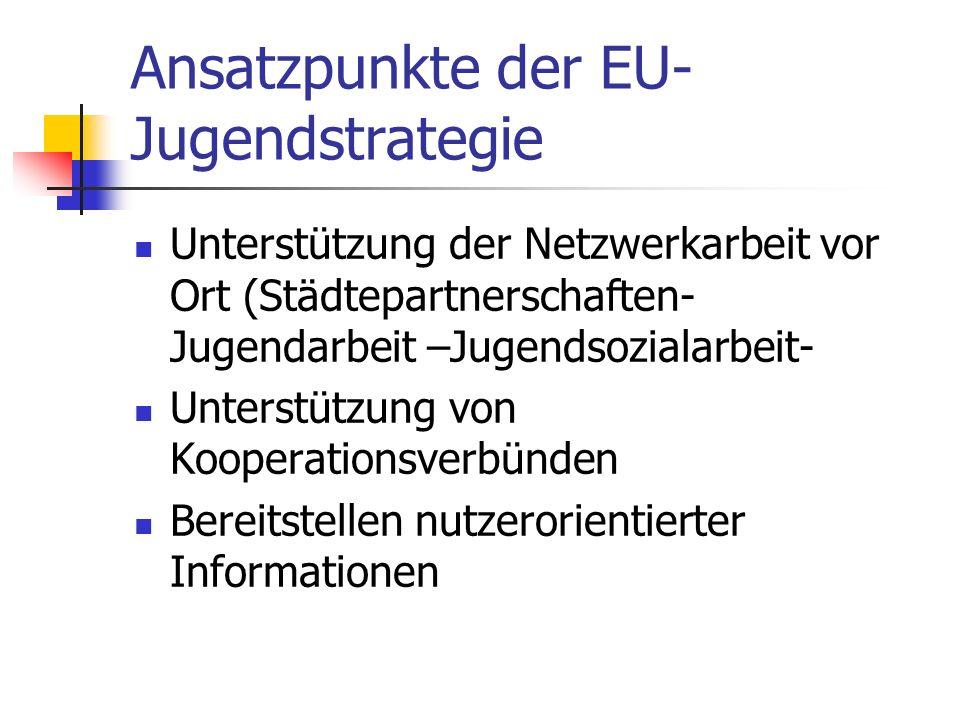Ansatzpunkte der EU- Jugendstrategie Unterstützung der Netzwerkarbeit vor Ort (Städtepartnerschaften- Jugendarbeit –Jugendsozialarbeit- Unterstützung von Kooperationsverbünden Bereitstellen nutzerorientierter Informationen