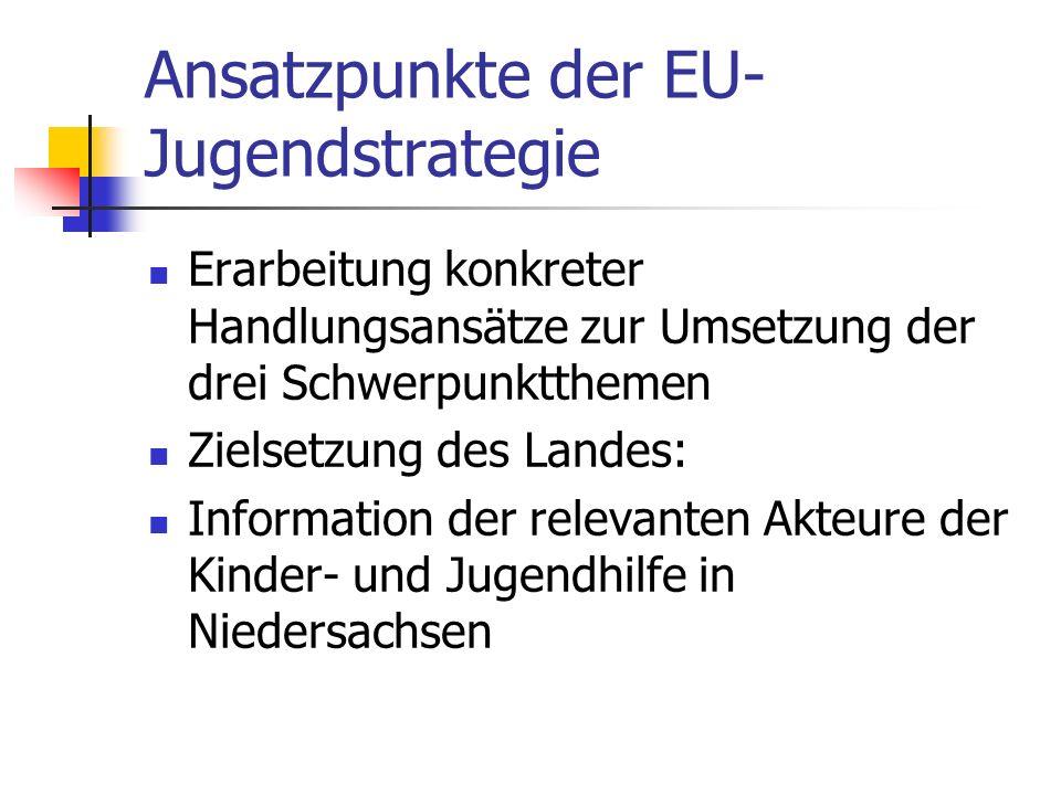Ansatzpunkte der EU- Jugendstrategie Erarbeitung konkreter Handlungsansätze zur Umsetzung der drei Schwerpunktthemen Zielsetzung des Landes: Informati