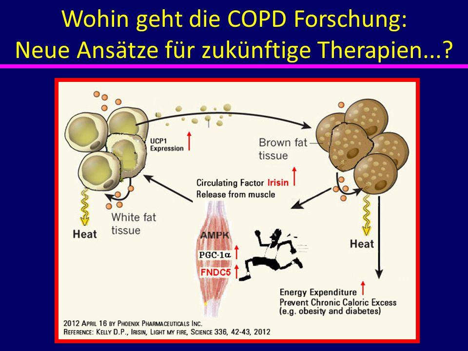 Wohin geht die COPD Forschung: Neue Ansätze für zukünftige Therapien...?