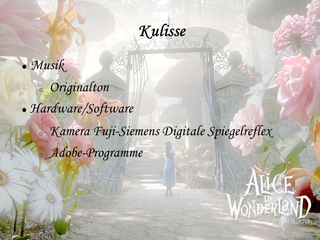 Musik o Originalton Hardware/Software o Kamera Fuji-Siemens Digitale Spiegelreflex o Adobe-Programme Kulisse