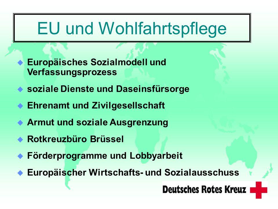 EU und Wohlfahrtspflege u Europäisches Sozialmodell und Verfassungsprozess u soziale Dienste und Daseinsfürsorge u Ehrenamt und Zivilgesellschaft u Ar