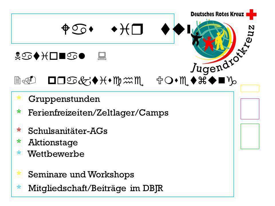 Was wir tun * Gruppenstunden National : 2. praktische Umsetzung * Ferienfreizeiten/Zeltlager/Camps * Wettbewerbe * Aktionstage * Schulsanitäter-AGs *