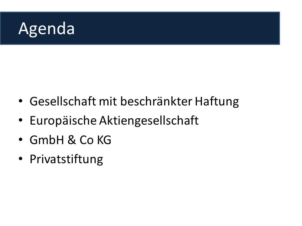 Agenda Gesellschaft mit beschränkter Haftung Europäische Aktiengesellschaft GmbH & Co KG Privatstiftung