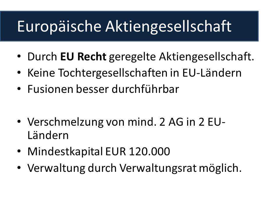 Europäische Aktiengesellschaft Durch EU Recht geregelte Aktiengesellschaft. Keine Tochtergesellschaften in EU-Ländern Fusionen besser durchführbar Ver