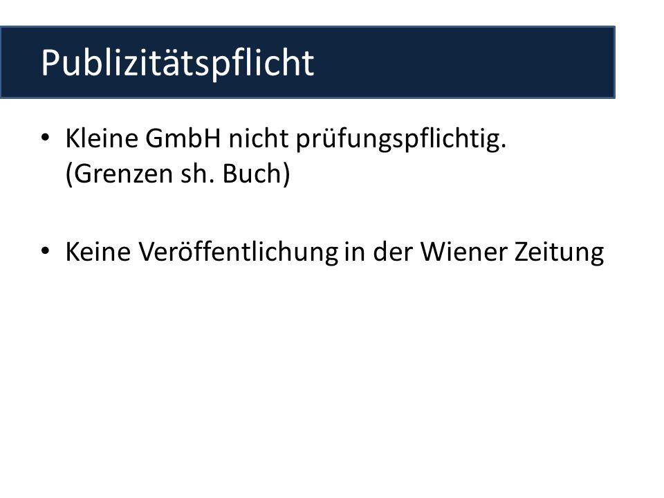 Publizitätspflicht Kleine GmbH nicht prüfungspflichtig. (Grenzen sh. Buch) Keine Veröffentlichung in der Wiener Zeitung