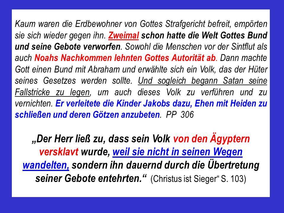 Kaum waren die Erdbewohner von Gottes Strafgericht befreit, empörten sie sich wieder gegen ihn. Zweimal schon hatte die Welt Gottes Bund und seine Geb