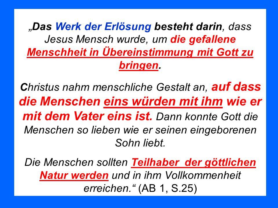 Das Werk der Erlösung besteht darin, dass Jesus Mensch wurde, um die gefallene Menschheit in Übereinstimmung mit Gott zu bringen. Christus nahm mensch