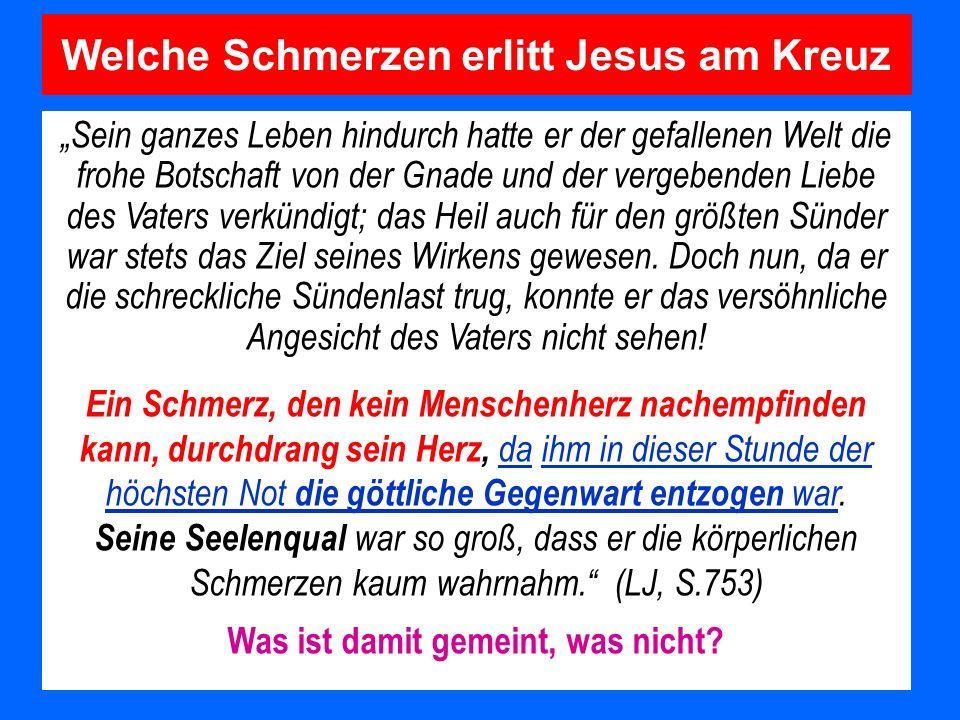 Welche Schmerzen erlitt Jesus am Kreuz Sein ganzes Leben hindurch hatte er der gefallenen Welt die frohe Botschaft von der Gnade und der vergebenden L