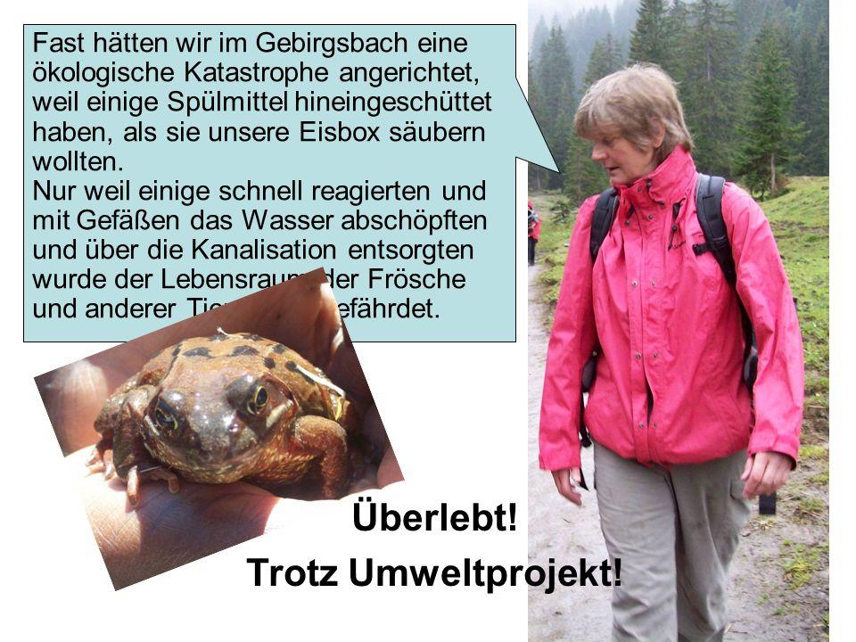 Fast hätten wir im Gebirgsbach eine ökologische Katastrophe angerichtet, weil einige Spülmittel hineingeschüttet haben, als sie unsere Eisbox säubern wollten.