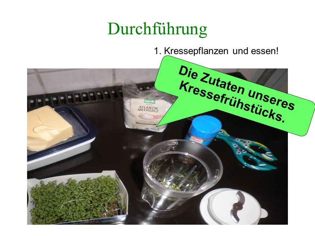 Durchführung 1. Kressepflanzen und essen! ++ = Die Zutaten unseres Kressefrühstücks.