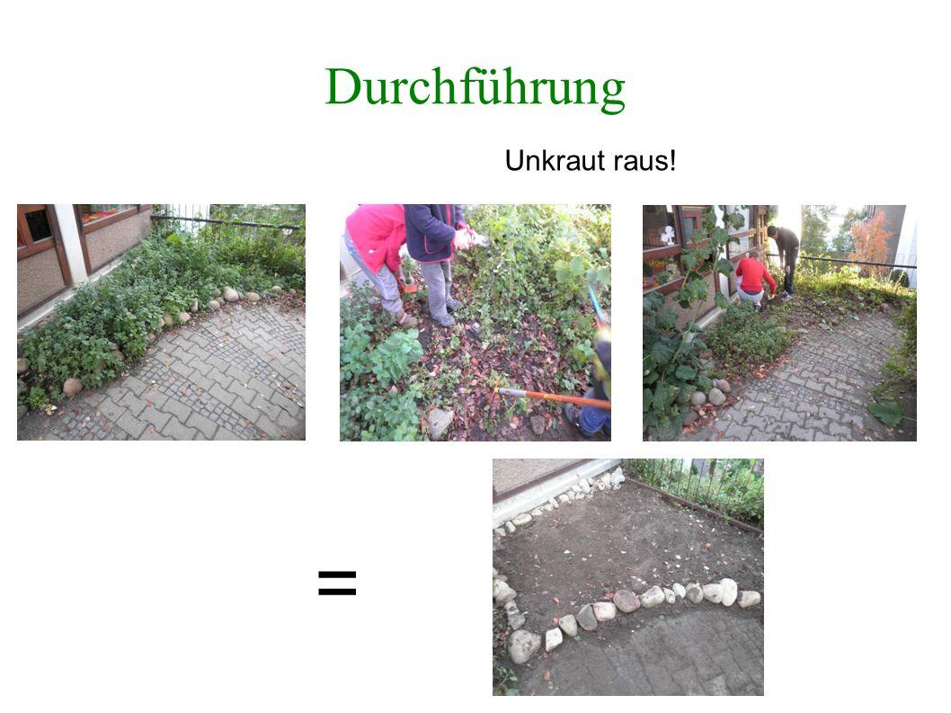 Durchführung Pflanzen rein! =