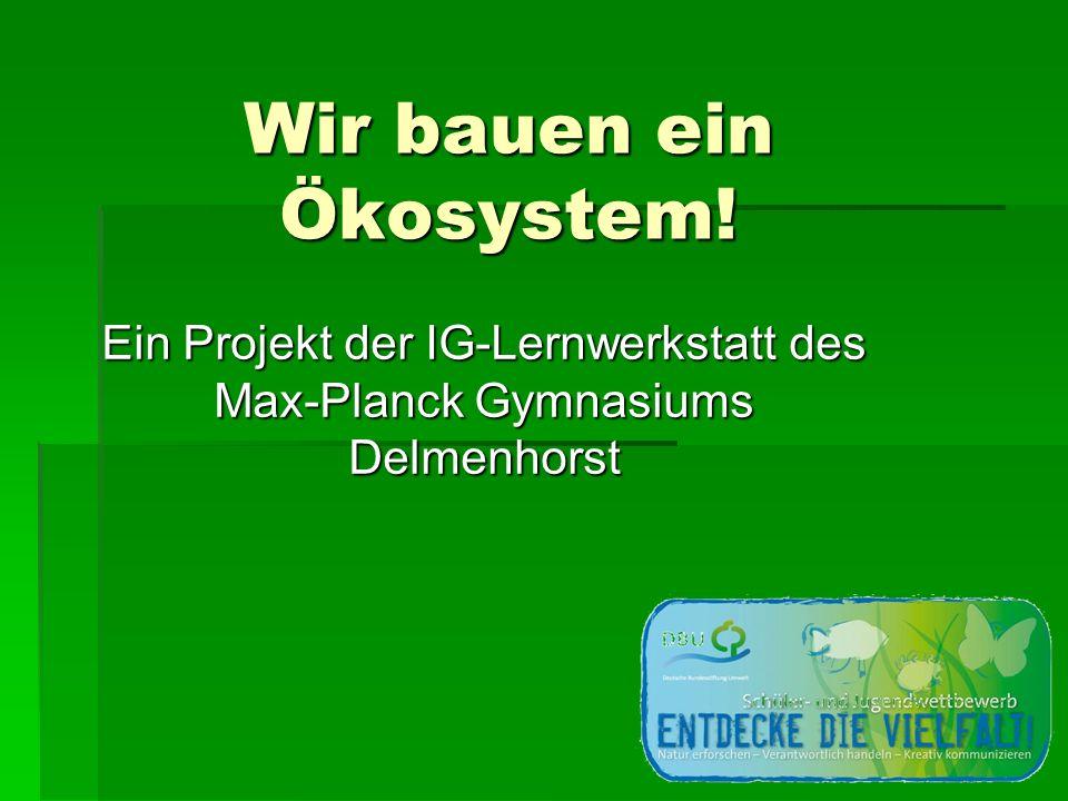 Wir bauen ein Ökosystem! Ein Projekt der IG-Lernwerkstatt des Max-Planck Gymnasiums Delmenhorst