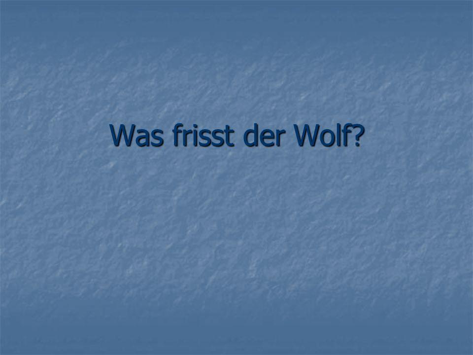 Was frisst der Wolf?