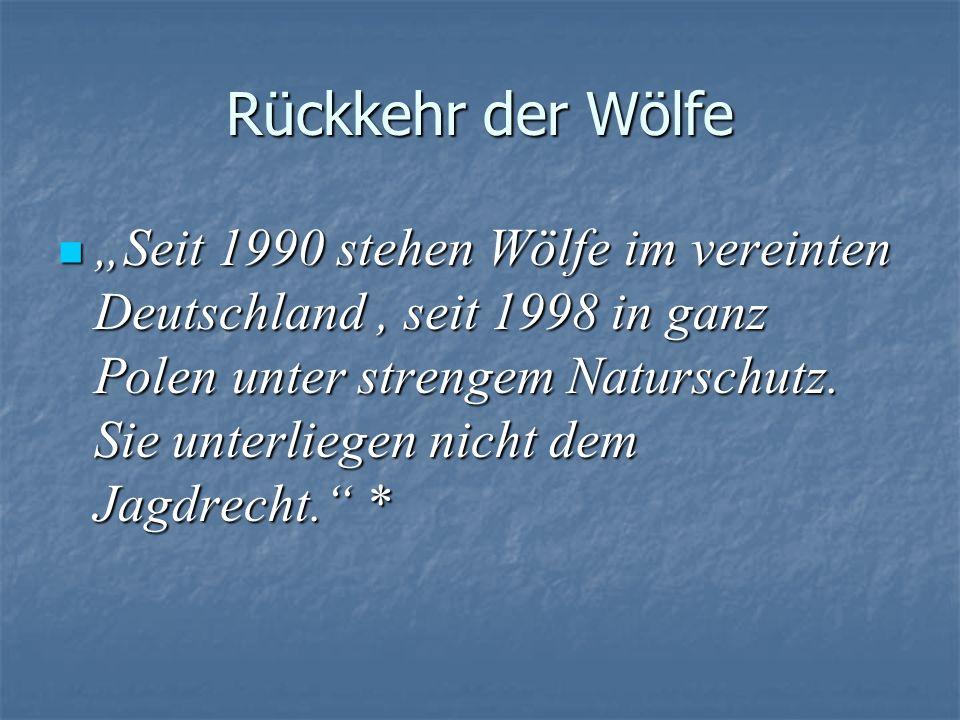 Rückkehr der Wölfe Seit 1990 stehen Wölfe im vereinten Deutschland, seit 1998 in ganz Polen unter strengem Naturschutz. Sie unterliegen nicht dem Jagd