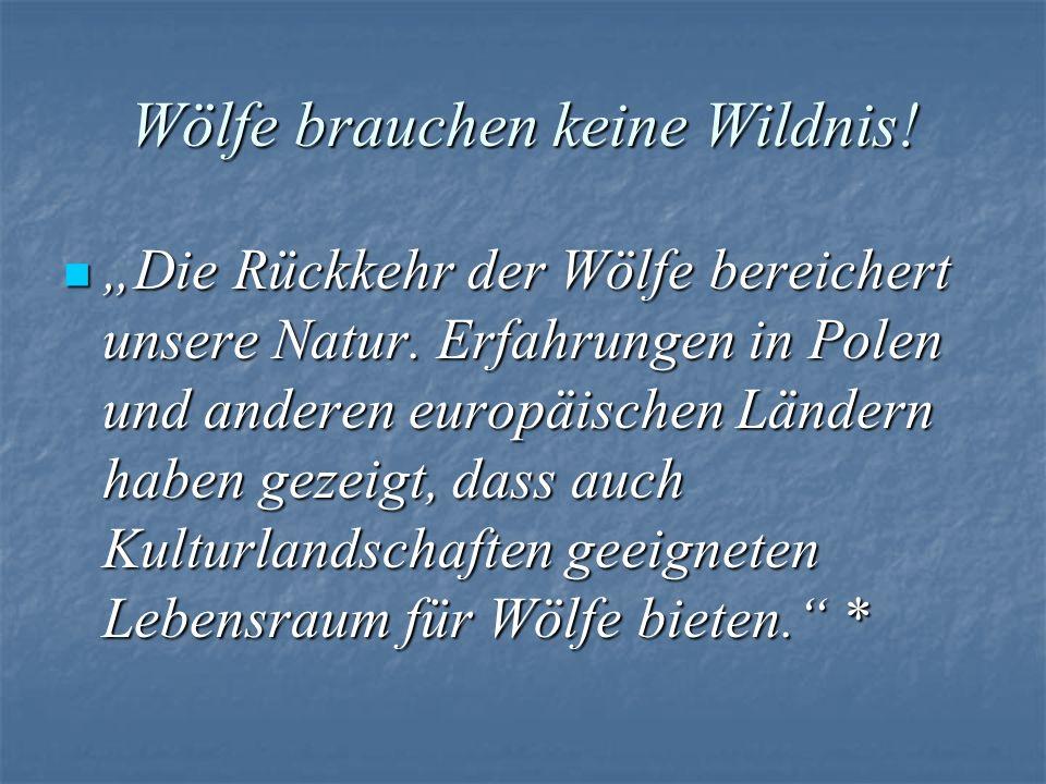Wölfe brauchen keine Wildnis! Die Rückkehr der Wölfe bereichert unsere Natur. Erfahrungen in Polen und anderen europäischen Ländern haben gezeigt, das