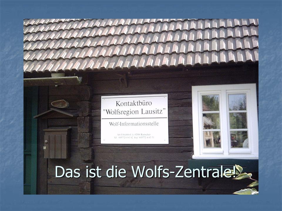 Das ist die Wolfs-Zentrale!