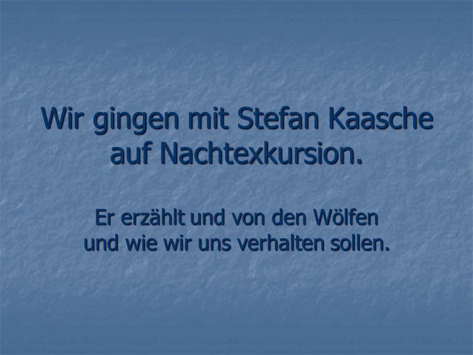 Wir gingen mit Stefan Kaasche auf Nachtexkursion. Er erzählt und von den Wölfen und wie wir uns verhalten sollen.