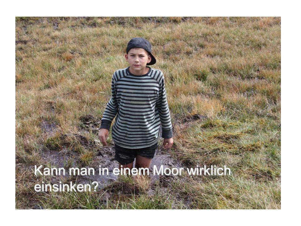 Kann man in einem Moor wirklich einsinken