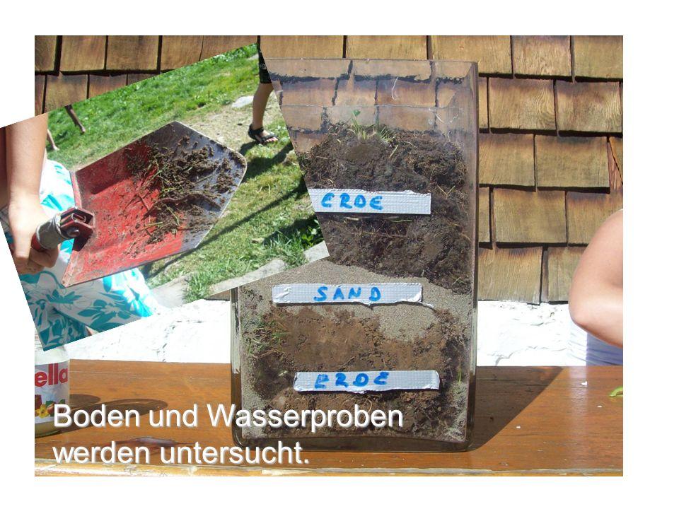 Boden und Wasserproben werden untersucht.