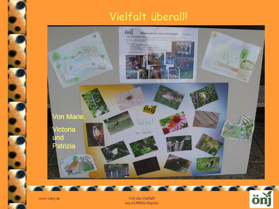 www.oenj.at Voll die Vielfalt! önj-AURING-Hüpfer Vielfalt überall! Von Marie, Victoria und Patrizia