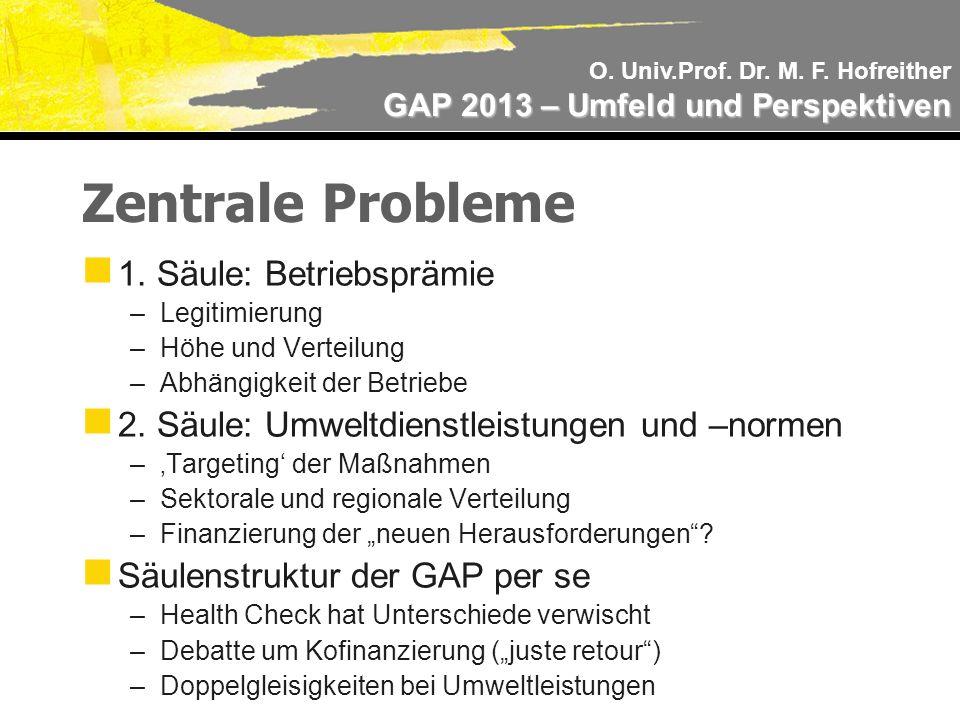 O. Univ.Prof. Dr. M. F. Hofreither GAP 2013 – Umfeld und Perspektiven Zentrale Probleme 1.