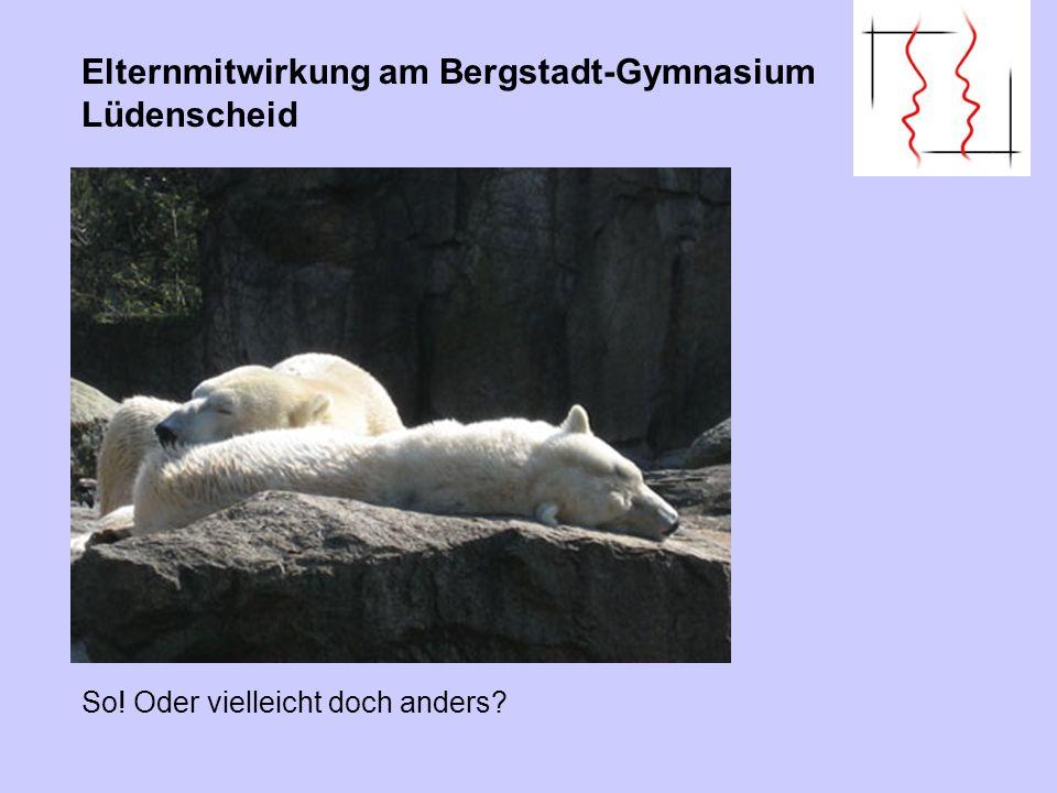 Elternmitwirkung am Bergstadt-Gymnasium Lüdenscheid So! Oder vielleicht doch anders?