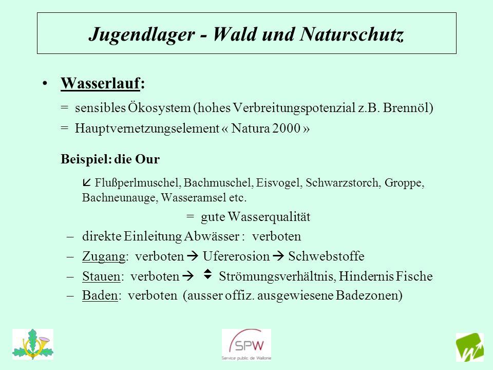 Wasserlauf: = sensibles Ökosystem (hohes Verbreitungspotenzial z.B. Brennöl) = Hauptvernetzungselement « Natura 2000 » Beispiel: die Our Flußperlmusch