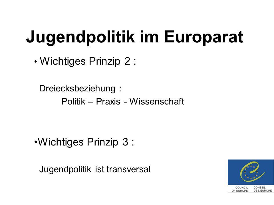 Bericht über die Jugendpolitik in Belgien Offizieller Name: « International review of national youth policy » 18.