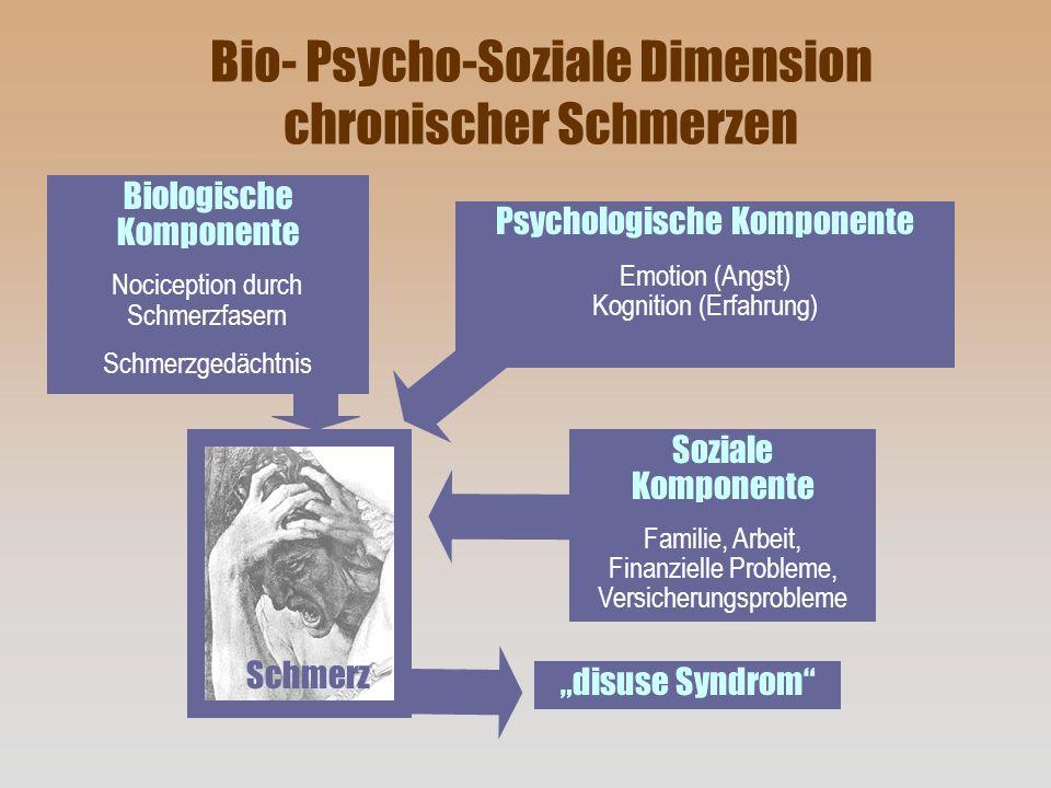 Biologische Komponente Nociception durch Schmerzfasern Schmerzgedächtnis Psychologische Komponente Emotion (Angst) Kognition (Erfahrung) Soziale Kompo