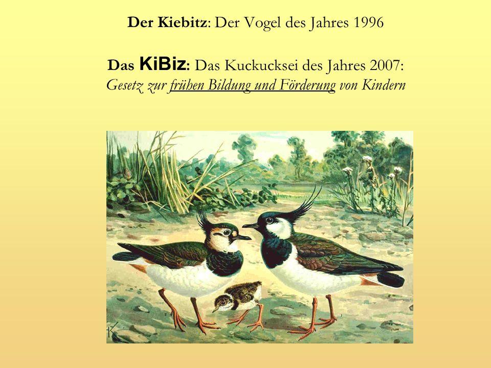 dpa-Meldung vom 22.5.2007: Kabinett verabschiedet Kindergarten-Novelle – Laschet: Konsens steht zentrales Reformvorhaben Ausbau u3 frühkd.