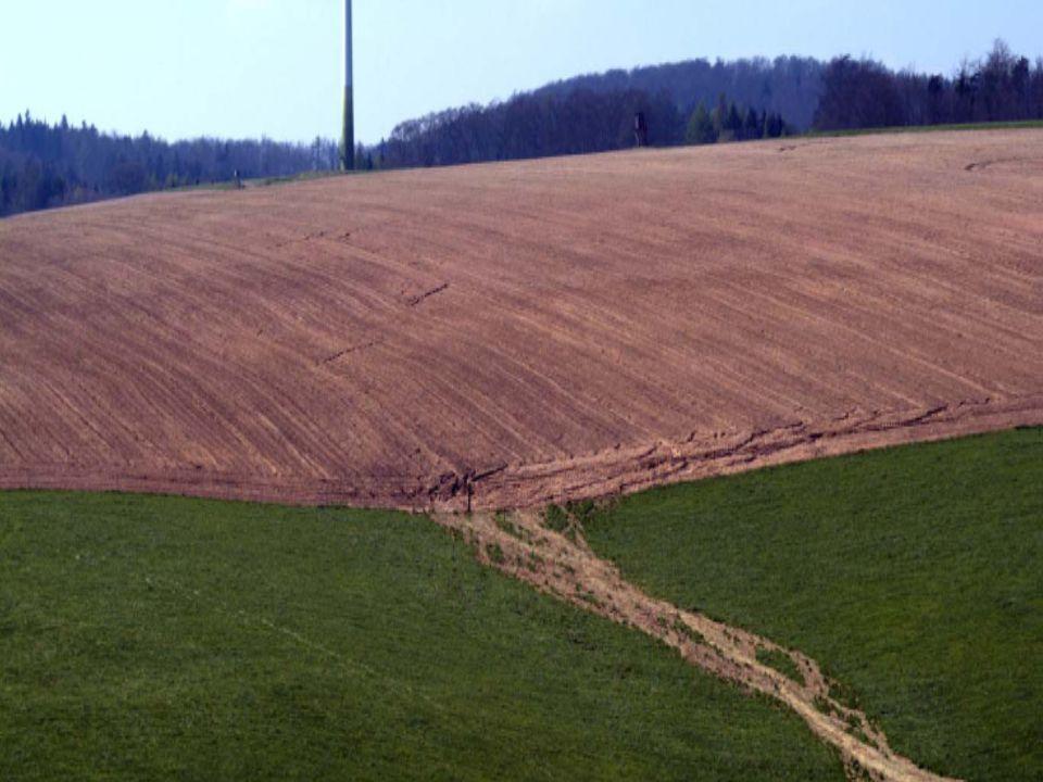 Bodenerosion auf Ackerstandorten