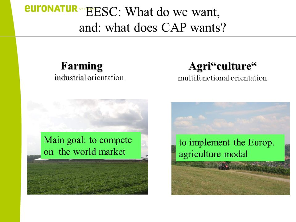 EESC: What do we want, and: what does CAP wants Farming industrial o industrial orientation Agriculture multifunctional orientation Main goal: to compete on the world market to implement the Europ.