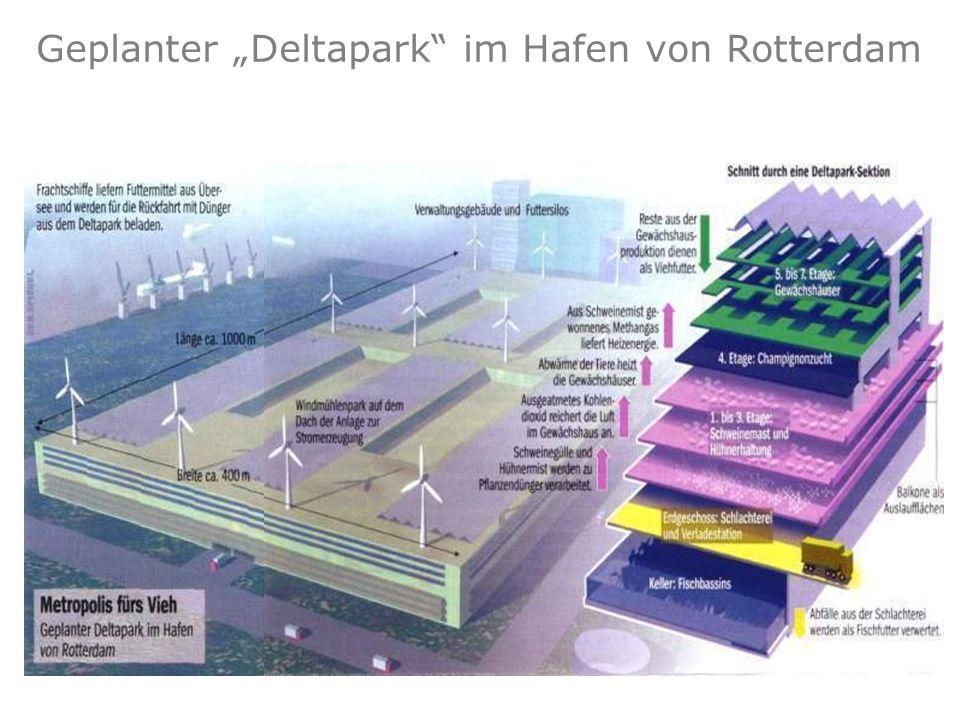 Grafik: Der Spiegel (2000) Geplanter Deltapark im Hafen von Rotterdam