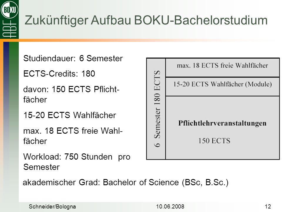 Schneider/Bologna10.06.200812 Zukünftiger Aufbau BOKU-Bachelorstudium Studiendauer: 6 Semester ECTS-Credits: 180 davon: 150 ECTS Pflicht- fächer 15-20