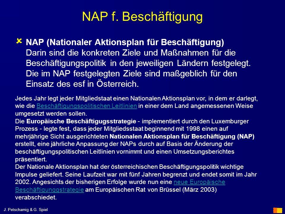 NAP f. Beschäftigung NAP (Nationaler Aktionsplan für Beschäftigung) Darin sind die konkreten Ziele und Maßnahmen für die Beschäftigungspolitik in den