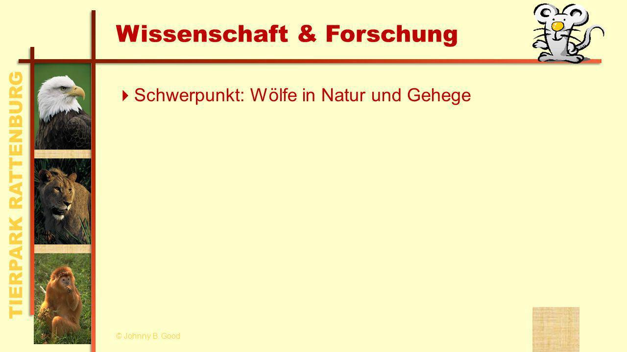 TIERPARK RATTENBURG Wissenschaft & Forschung Schwerpunkt: Wölfe in Natur und Gehege © Johnny B.